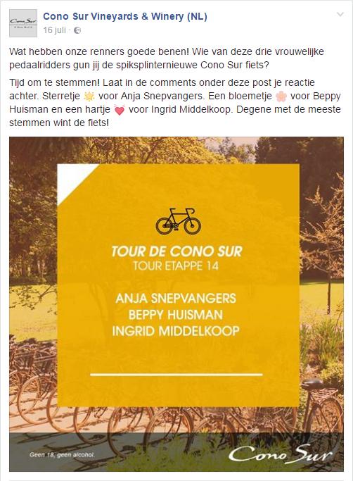 Tour de Cono Sur Etappe 14