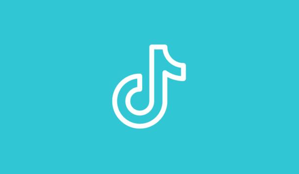 WeDigital_TikTok_Blog_2020_Mei